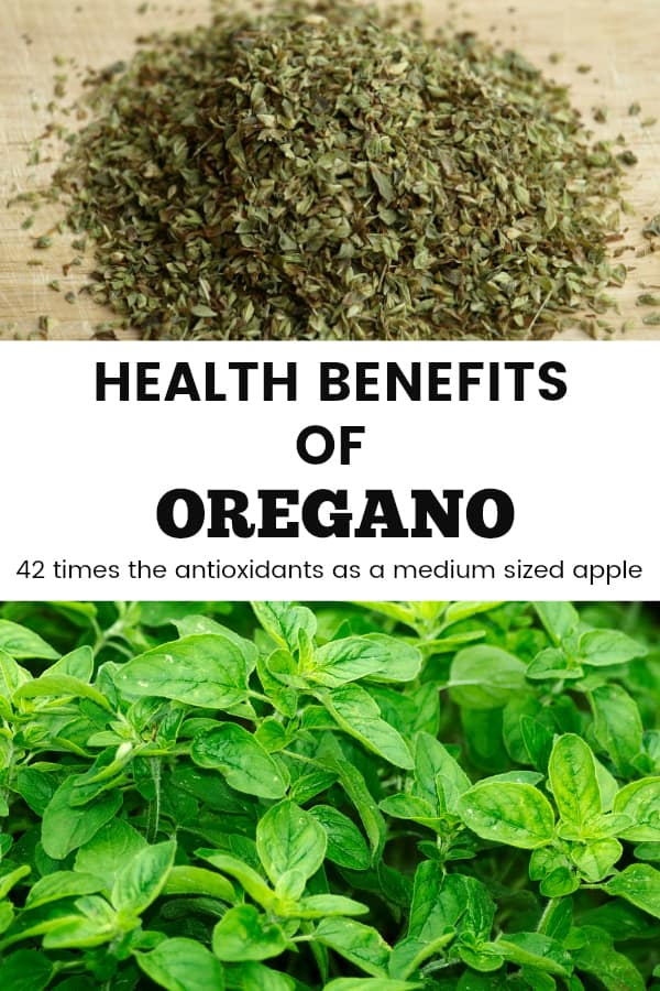 dried and fresh oregano with text overlay health benefits of oregano 42 times the antioxidants as a medium sized apple