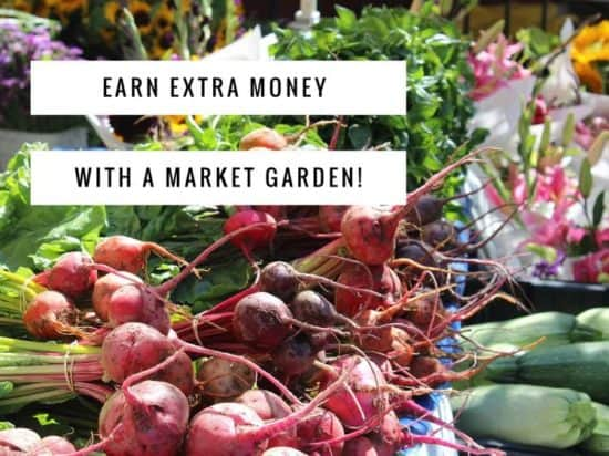 start a market garden