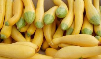 Health Benefits of Summer Squash