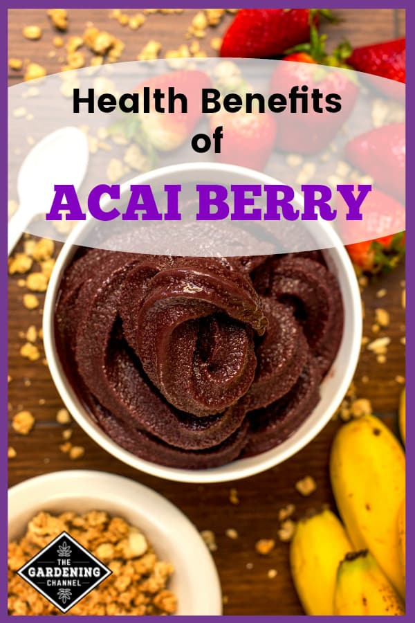 acai bowl with fruit with text overlay health benefits of acai berry