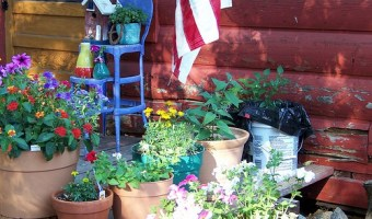 Container Garden Watering Tips