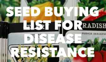 Disease Resistance Buying List for Vegetable Seeds