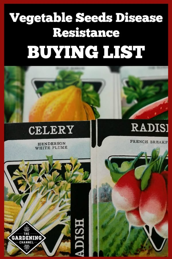 seed packets with text overlay vegetable seeds disease resistance buying list