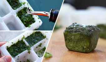 How to freeze basil to save
