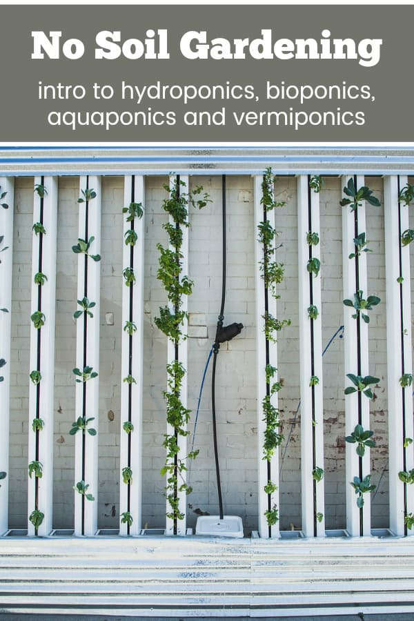 hydronic gardening with text overlay no soil gardening into to hydropnics bioponics aquaponics and vermiponics