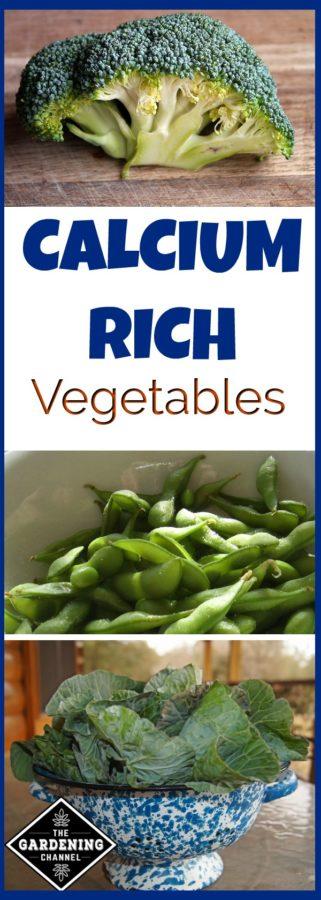 calcium right vegetables