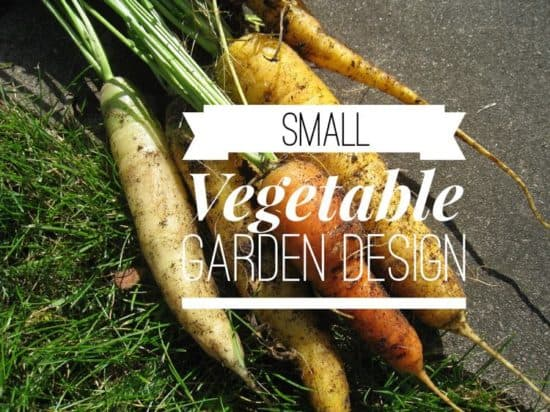 how to lay out a small vegetable garden - Small Vegetable Garden Ideas