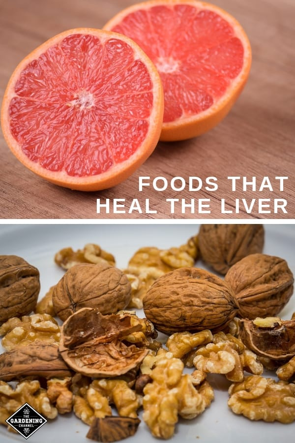 grapefruit and walnuts with text overlay foods that heal the liver