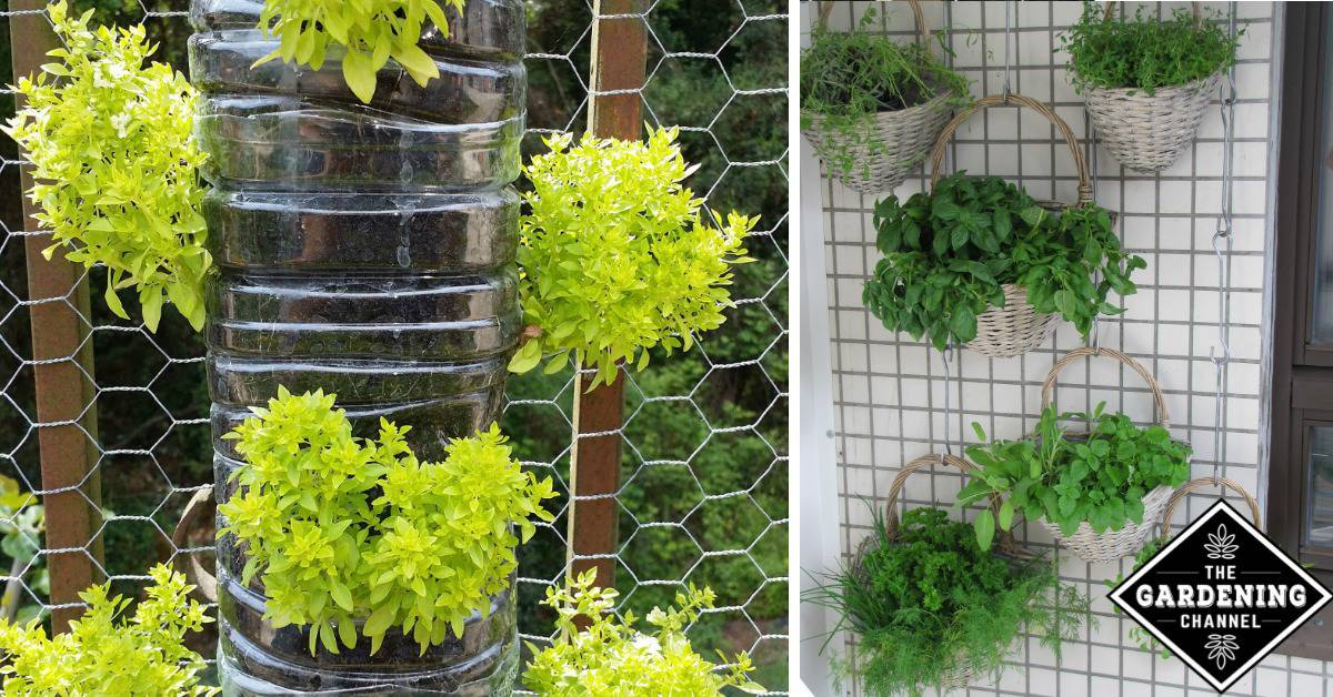 10 Fun Vertical Gardening Ideas Gardening Channel