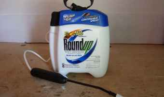 roundup plus pump N go review