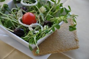 Health Benefits of a Raw Food Diet