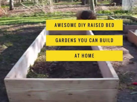 Best DIY Raised Bed Garden Plans   Gardening Channel Try these awesome DIY raised bed garden ideas
