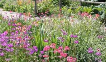 The National Botanic Garden of Wales