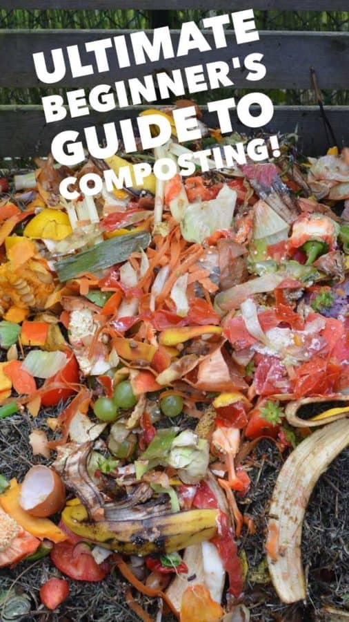 beginner guide to composting how to make compost