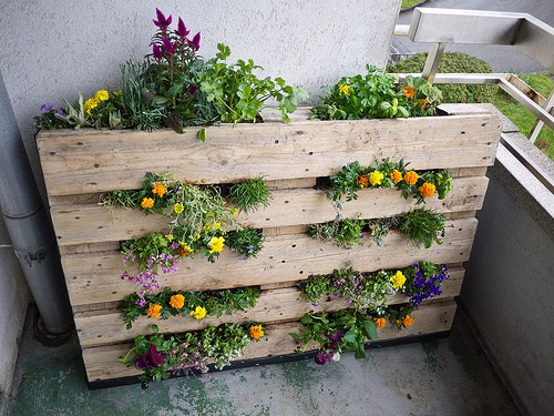 creative pallet use - Garden Ideas Using Pallets