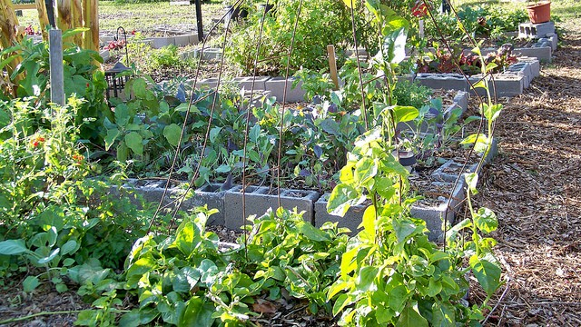 4 Strange Diy Raised Bed Garden Ideas You Could Build Yourself