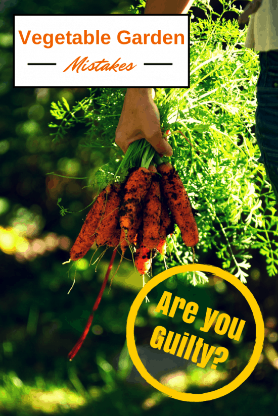 Vegetable Gardening Mistakes