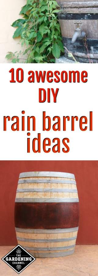 DIY rain barrel ideas