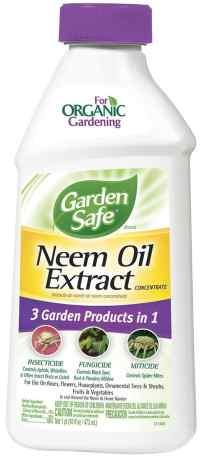 Neem oil for grasshopper management