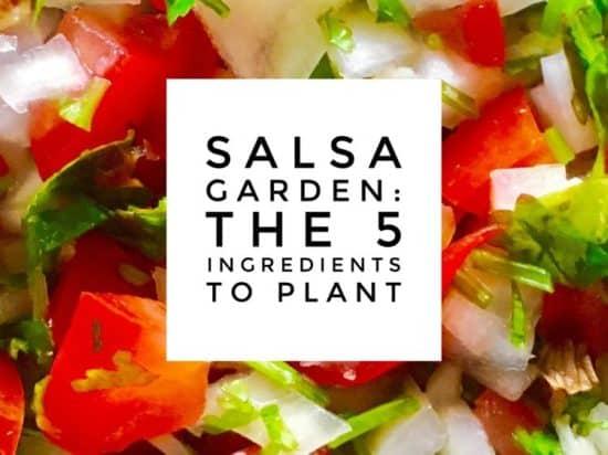 How to Plant a Salsa Garden