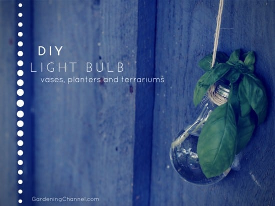Diy Recycle Light Bulbs For Vases Flower Planters And Terrariums