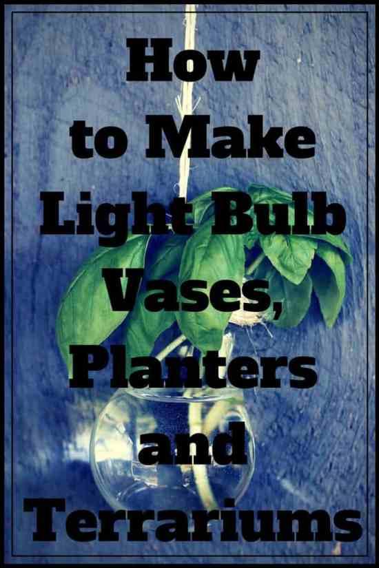DIY Pinterest Light Bulb Planter