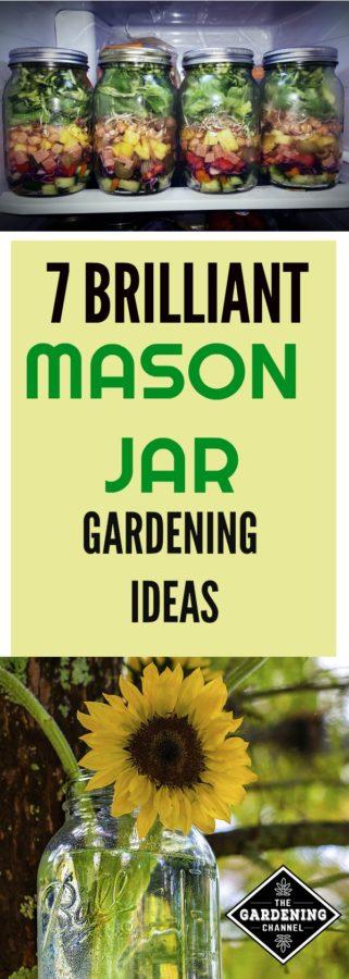 mason jar gardening ideas