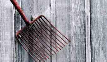5 Amazing Ways to Repurpose Garden Tools