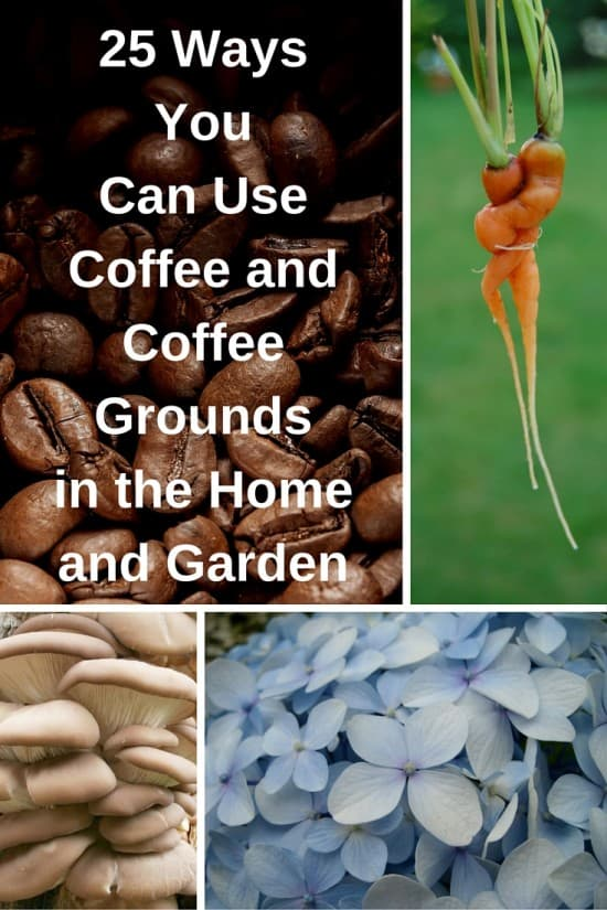 weird ways to use coffee in the home and garden