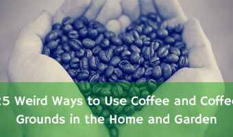 25 Weird Ways to Use Coffee and Coffee Grounds