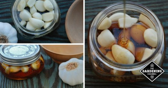 Natural Remedy Honey Garlic