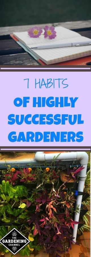 habits of successful gardeners