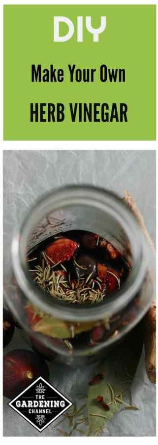 preserve herbs in vinegar