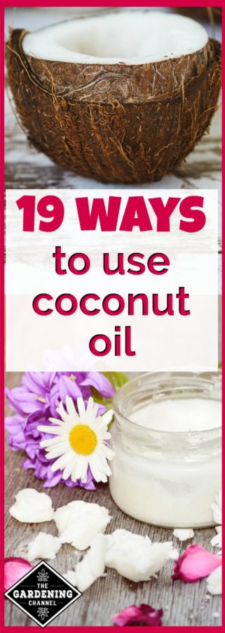 WAys to use coconut oil