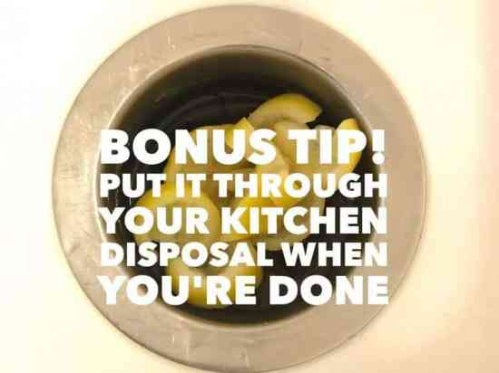 clean disposal with lemons too
