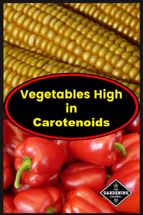corn and red peppers with text overlay vegetables high in carotenoids