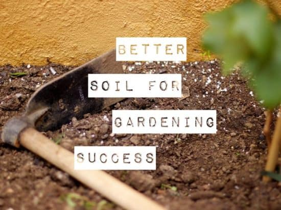 Ways to Improve Garden Soil