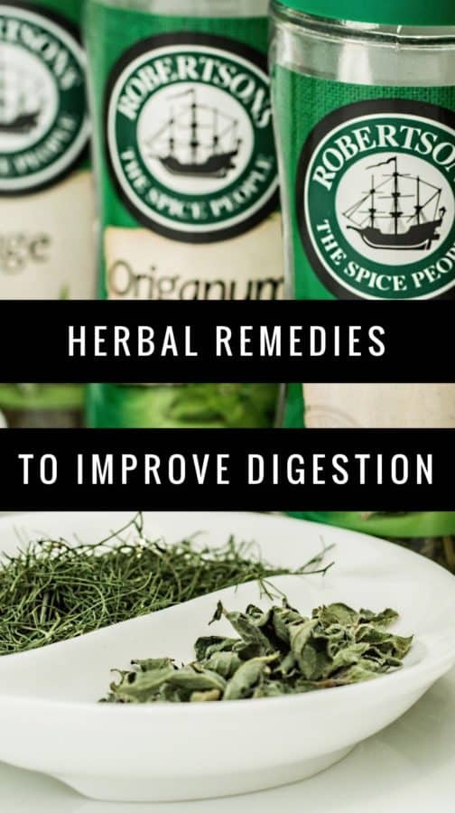 Herbs that Improve Digestion
