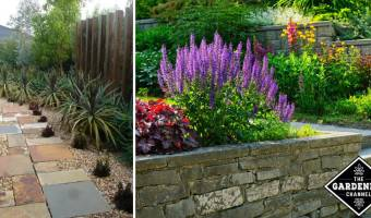 Xeriscape: Making the Most of Your Climate