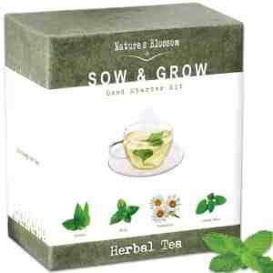 tea grow kit