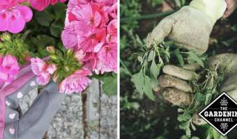 flower gardening gloves and weeding garden gloves