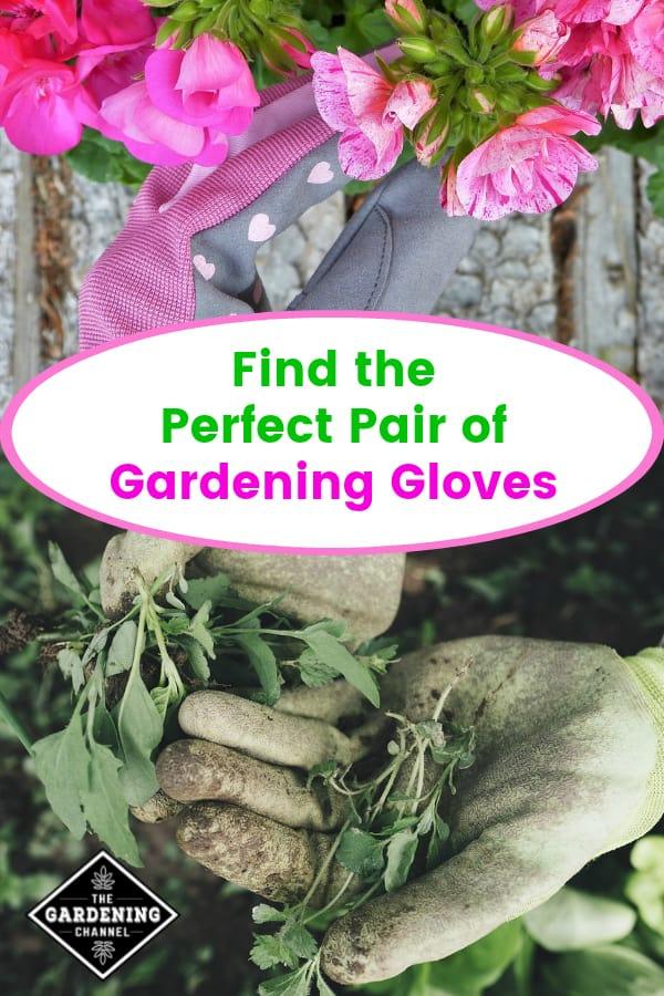 flower gardening gloves and weeding garden gloves with text overlay find the perfect pair of gardening gloves