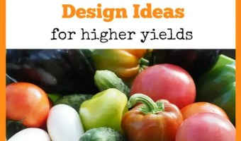 Designing a Vegetable Garden for Higher Yields