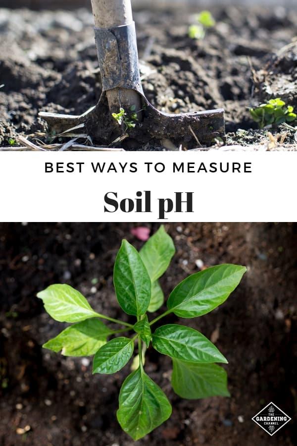 shovel in garden soil garden soil with text overlay best ways to measure soil ph