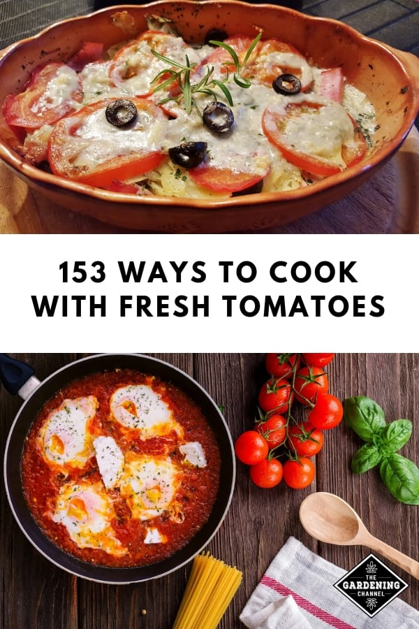 tomato pie and tomato sauce with text overlay one hundred ways to cook with fresh tomatoes