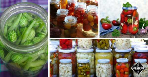homemade pickle recipes for fruit vegetables