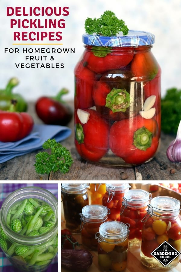 pickling recipes for fruits and vegetables with text overlay delicious pickling recipes