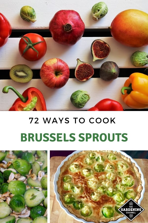 garden vegetables and brussels sprout recipes with text overlay seventy two ways to cook brussels sprouts