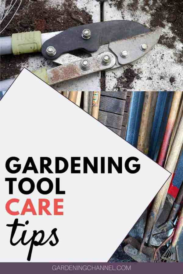 garden pruners and tools with text overlay gardening tool care tips