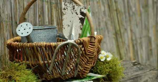 gardening gifts